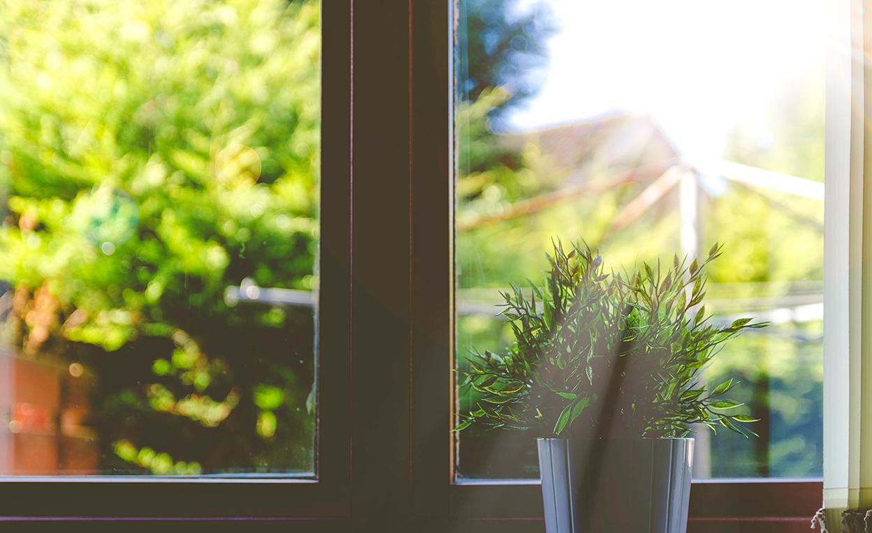 日差しが差し込む窓